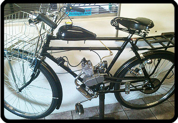 motorized raleigh bike edenvale